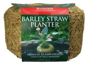 Clear-Water® Barley Straw Planters
