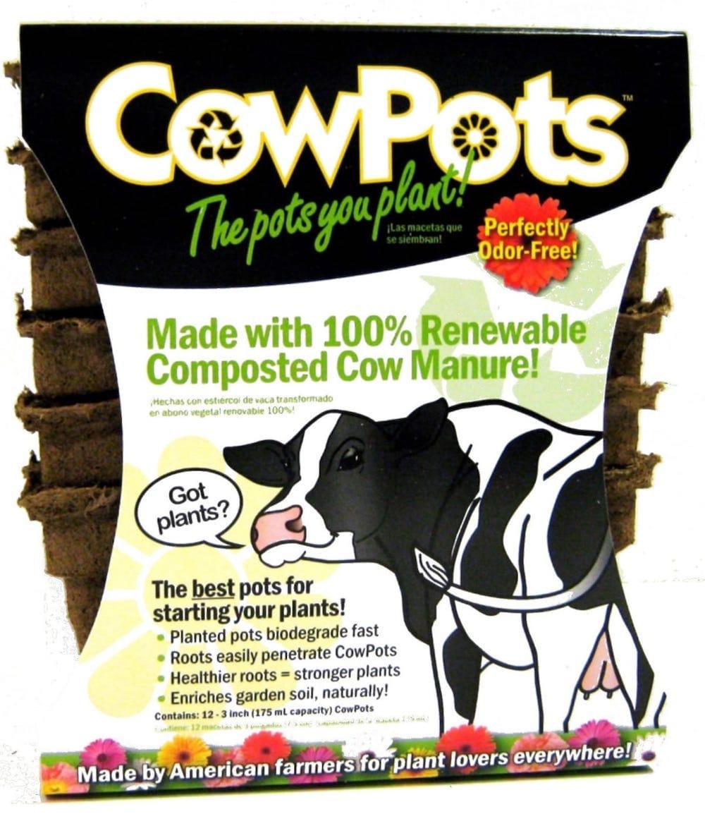 Cowpots-00103